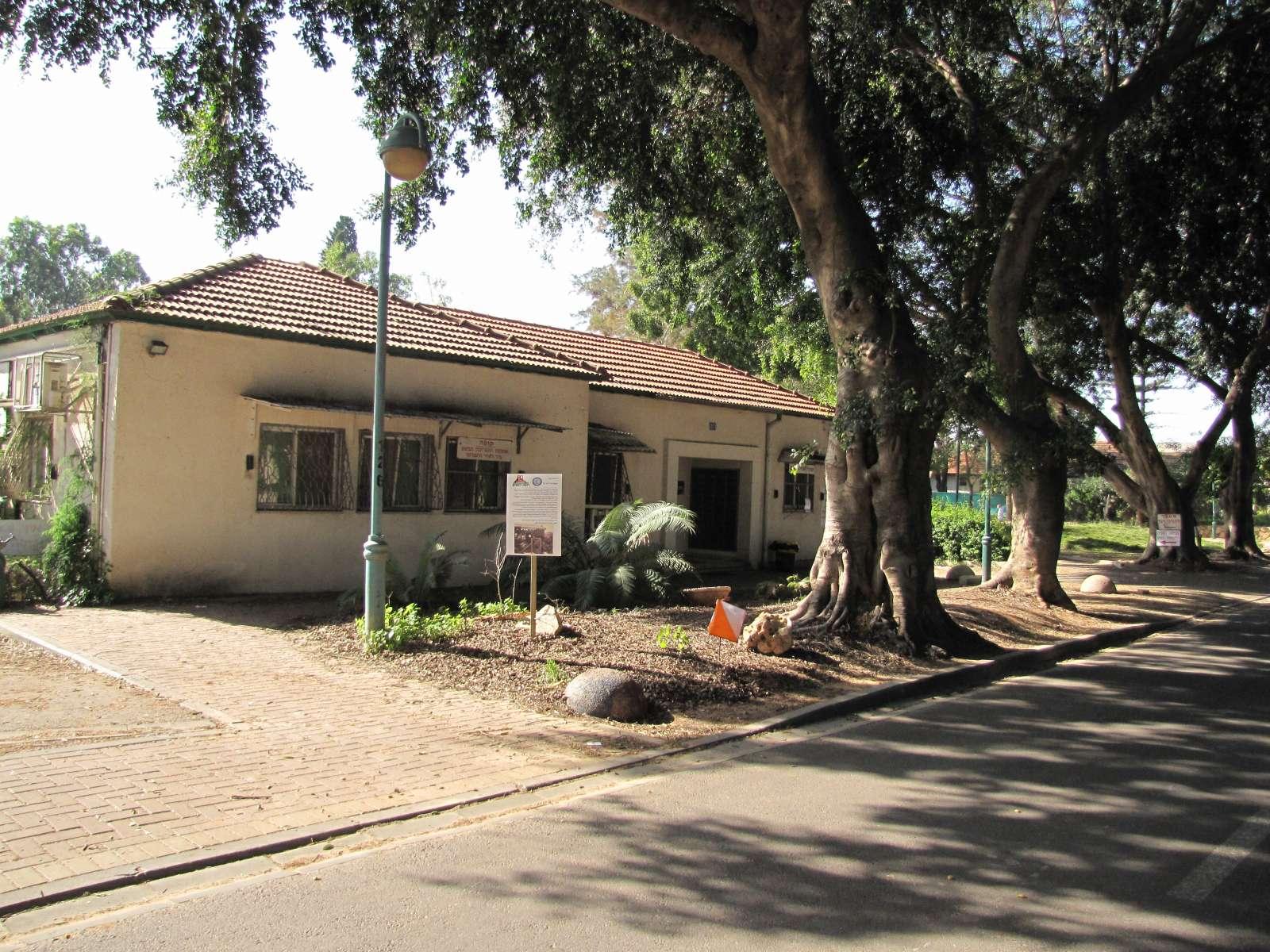 משרד קואופרטיב אל-על, צילמה איריס מורג 2013