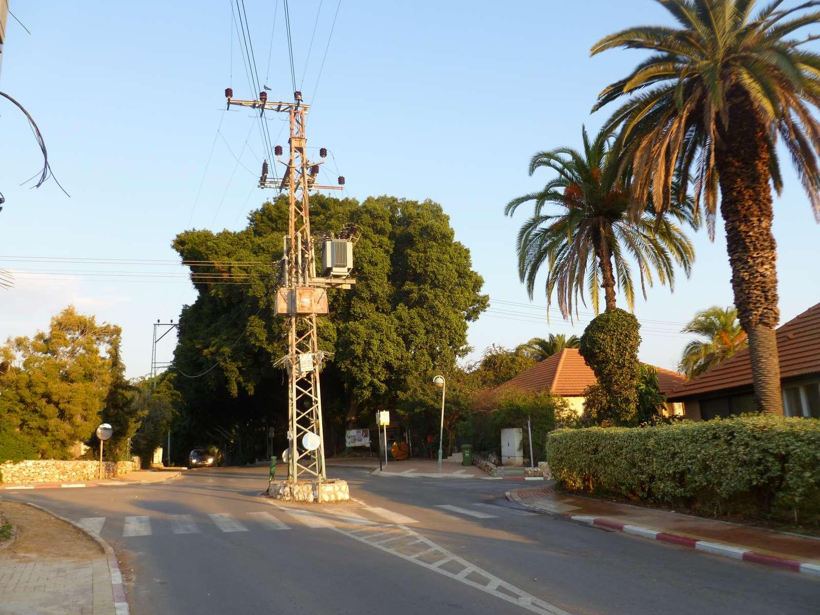 עמוד החשמל המיתולוגי, עמד כאן לפני שהוקם היישוב, הורד ב- צילם גונן ישר